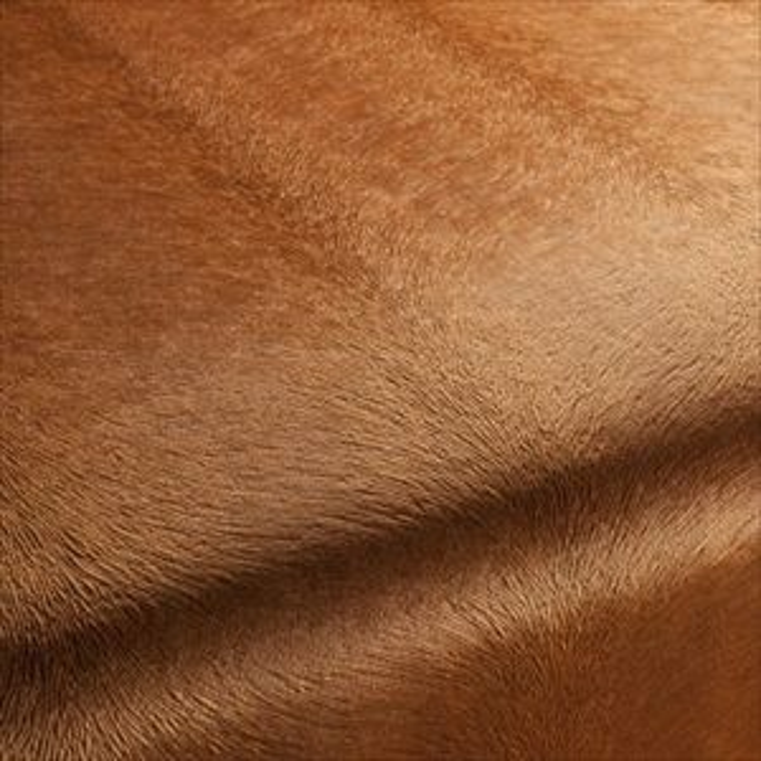 fabric-carlucci-di-chivasso-pistoia-velvet-ca1292-061