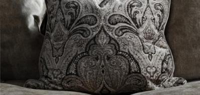 Paisley Cushions